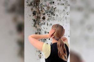 Hilfe gegen Schimmel an den Wänden